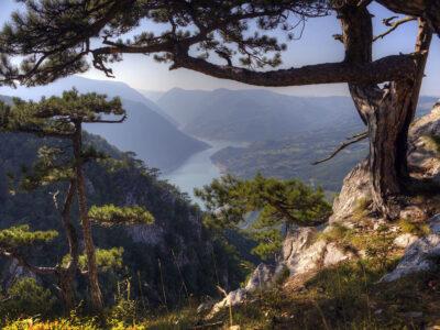 nacionalni park tara galerija (1)